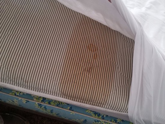 Douglas, AZ: Scary stain on mattress