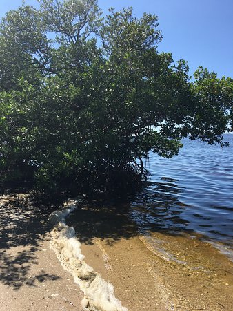 Palmetto, FL: photo4.jpg