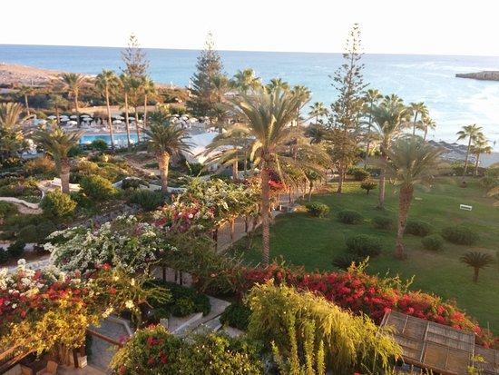 Nissi Beach Resort: IMG-20160925-WA0002_large.jpg