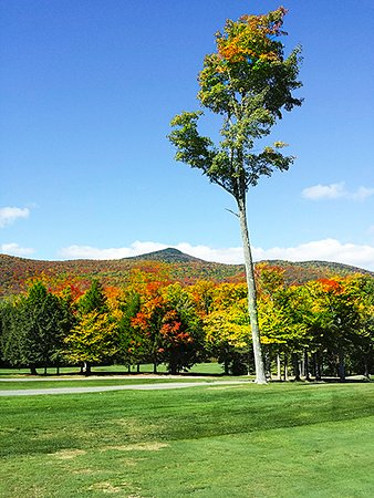 Wilmington, VT: Hermitage golf