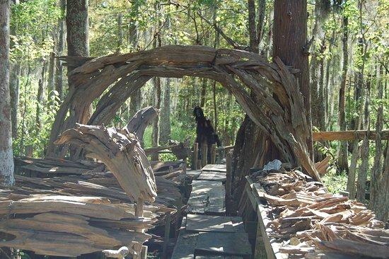 Pierre Part, LA: Driftwood swamp Monster