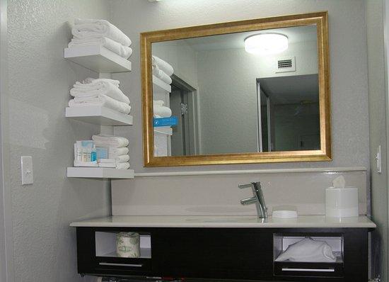 Hampton Inn U0026 Suites Nashville / Airport: Bathroom Vanity