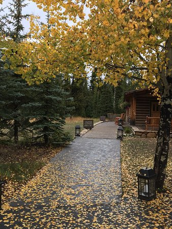 Jenny Lake Lodge: photo1.jpg