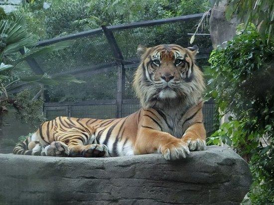 Selcohome Zoo Paradise Yagiyama