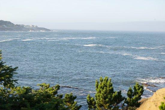 Inn at Arch Rock: Whale watching from the hotel grounds