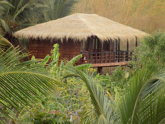Vista Treehouse Stay Review Of The Hideout Sigiriya