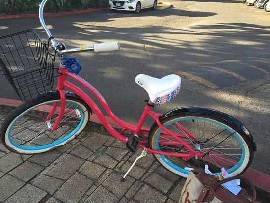 North Shore Bike Rentals: photo0.jpg