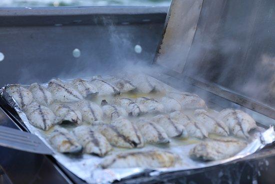Georgetown, Καναδάς: Moist, succulent, lightly seasoned fresh caught Mackerel.