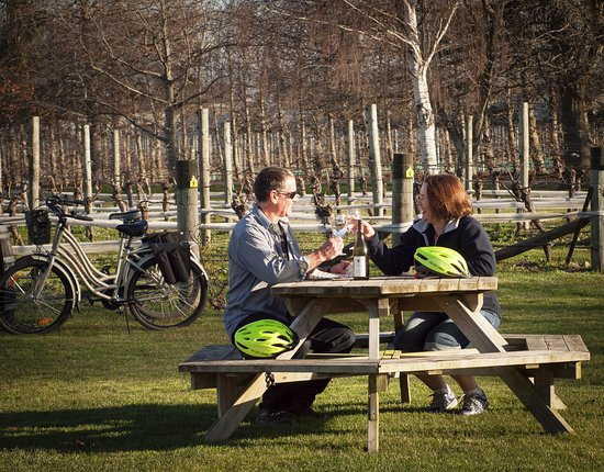 Ренвик, Новая Зеландия: Your complimentary wine tour by bike during your stay with us