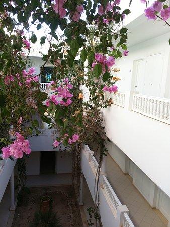 Hotel Djerba Les Dunes: IMG_20160805_172418_large.jpg