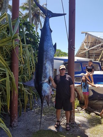 Marlin Queen Fishing Charters : The biggest fish I've ever seen!