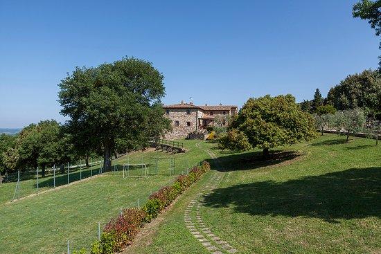 Gambassi Terme, Italia: Campetto da calcio