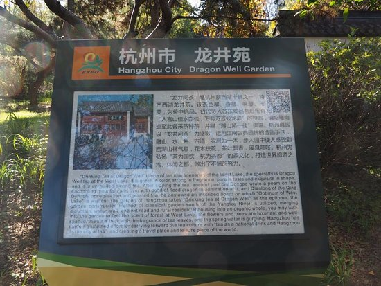 Shenyang International Horticultural Expo Garden: Board