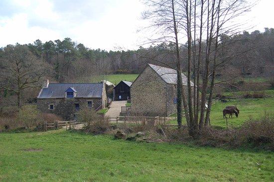 เควสเทมเบิร์ท, ฝรั่งเศส: Moulin de Lançay à Quetsembert vue d'ensemble