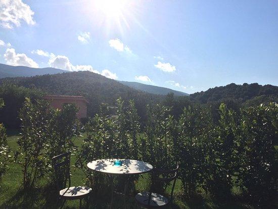 Monte Argentario, Włochy: photo2.jpg