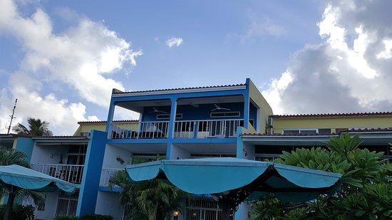 Bonaire Oceanfront Apartments 사진