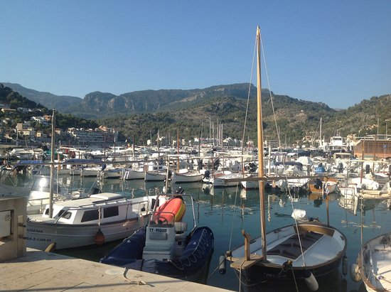 Hotel Los Geranios: View from the port