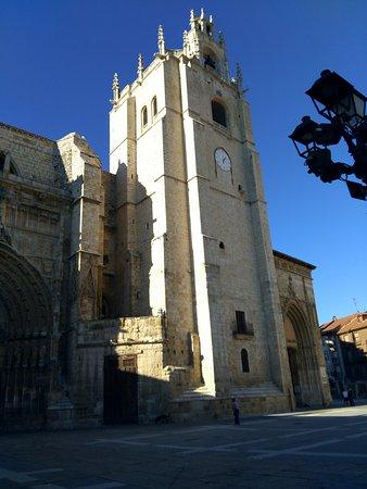 Catedral de San Antolin : Torre de la Catedral