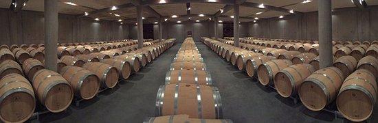 Château Luchey-Halde : Wine cellar
