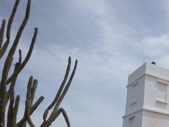 Parco nazionale di Washington-Slagbaai, Bonaire: Lighthouse
