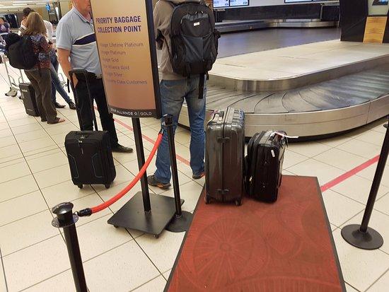 south african airways baggage fees