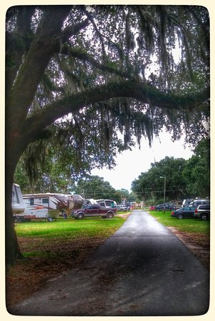 Perry, FL: clean with shade trees
