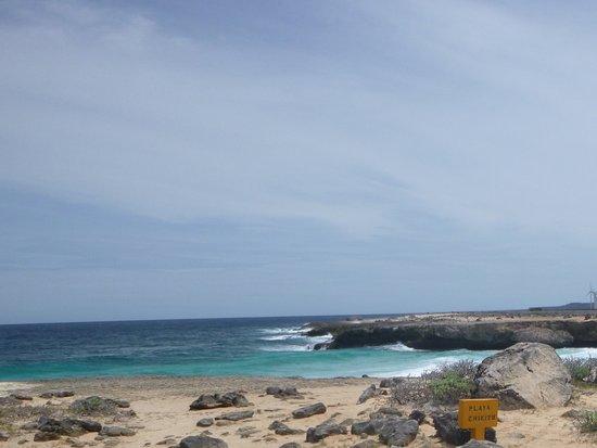 Parco nazionale di Washington-Slagbaai, Bonaire: Warning Signs