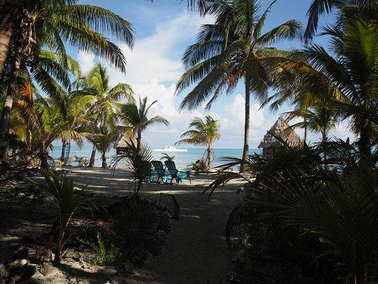 Glover's Atoll Resort: beach scene