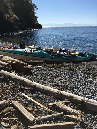 Sea Quest Expeditions Kayak Tours: photo6.jpg