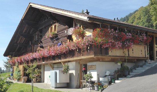 das vollumfänglich blumengeschmückte Holzhaus in Beatenberg