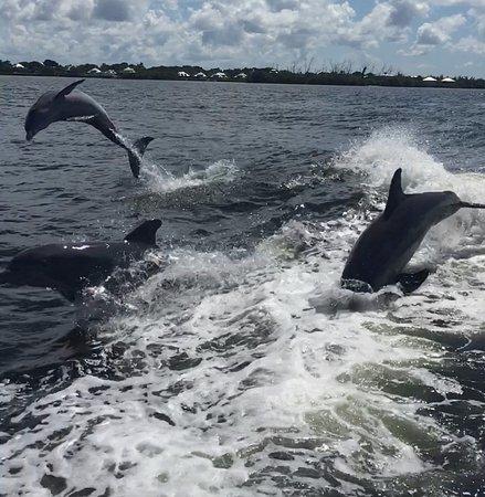 Boca Grande, FL: 10-06-2016 Boca Boat Cruise extravaganza!