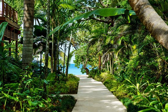 Idle Awhile The Villas: Pathway leading to the beach