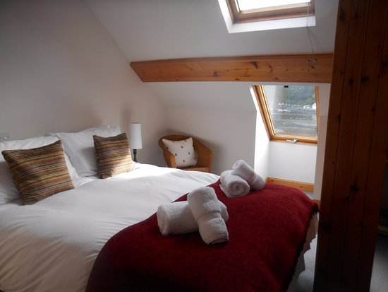 Mosshill Accommodation : Room