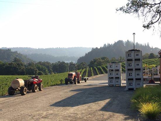 Hotels In St Helena Kalifornien
