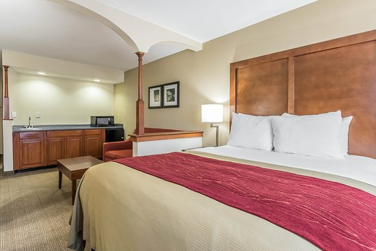 Comfort Inn Nashville/White Bridge: Queen suite