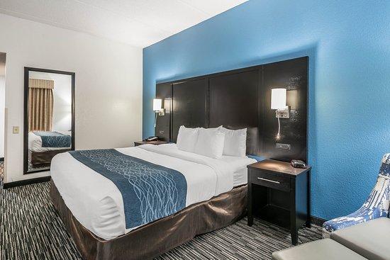 comfort inn university updated 2017 prices hotel reviews gainesville fl tripadvisor. Black Bedroom Furniture Sets. Home Design Ideas