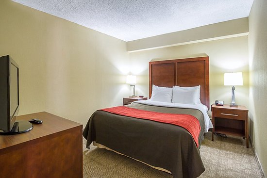 Comfort Inn Downtown: Guest Room