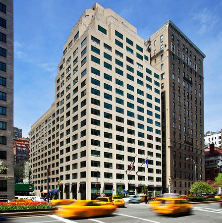Loews regency new york hotel updated 2017 reviews for New york pet friendly hotels