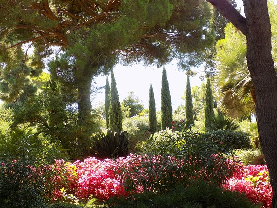 Orage picture of camping el pinar blanes tripadvisor for Camping jardin botanique
