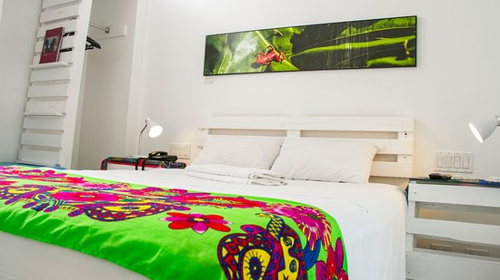 Hotel Gatto Blanco: Standard Room
