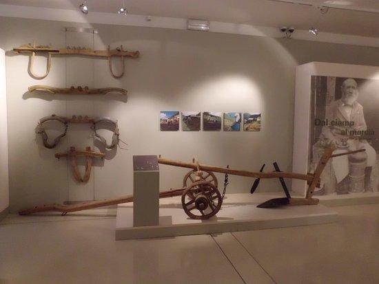Museo Ladino di Fassa: Giogo ed aratro