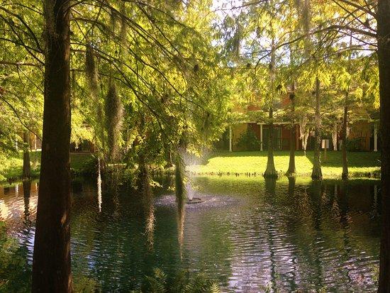 BEST WESTERN PREMIER Saratoga Resort Villas: The view we miss