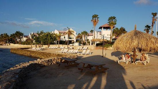 Plaza Resort Bonaire: IMG-20160920-WA0016_large.jpg
