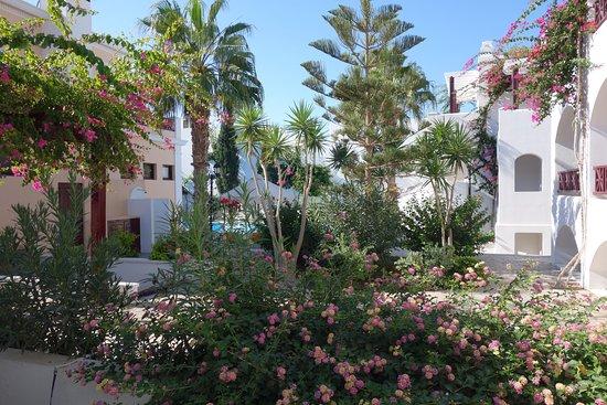 Veggera Hotel: Jardin
