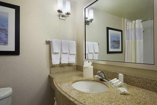 Hilton Garden Inn Tampa Airport Westshore: Guestroom Bathroom