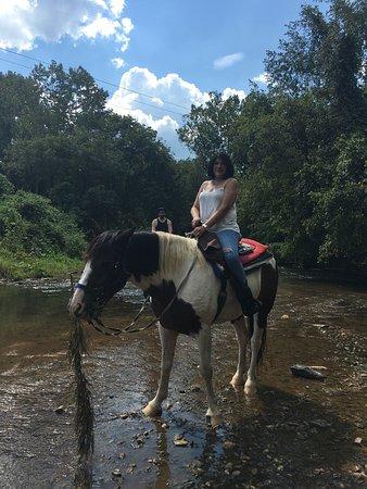 Riverside Riding Stables: photo0.jpg