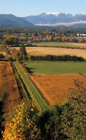 Courtenay, كندا: Comox Bay Farm