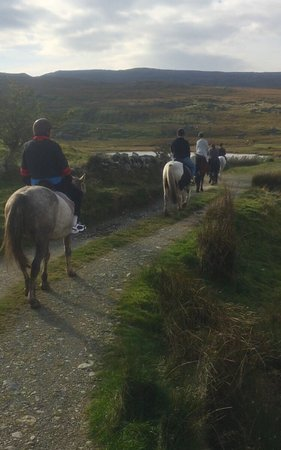 Knockillaree Riding Centre