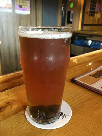 Ely, MN: blueberry blonde beer