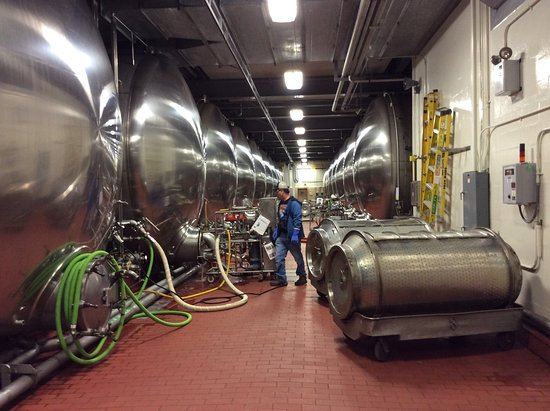 Anheuser-Busch Brewery Tours: Tanks, and more tanks of beer.